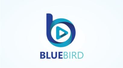 Blue Bird Media